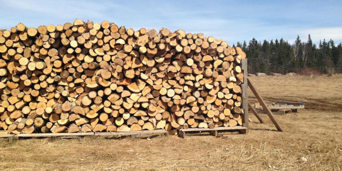 wood 10